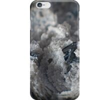 Topaz and Hematite in Rhyolite iPhone Case/Skin