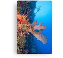 Bloody Bay Wall Canvas Print