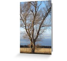 plains country Greeting Card