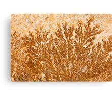 Dendrites Canvas Print