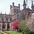 Chester Cathedral, England by AnnDixon