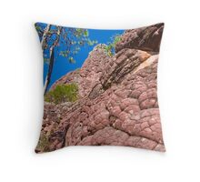 Beehive rock Throw Pillow