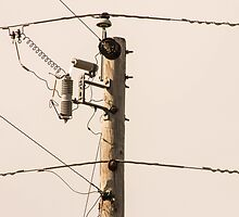 Wired by Gary Horner