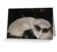 She`s behind you!!! Greeting Card