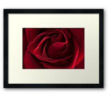 Dark Red Rose Framed Print