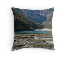 Jade Dragon Throw Pillow