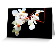 white contrast  Greeting Card