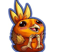 Torchic by sketh