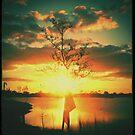 Sunset - Diana F+ by KadesRave67