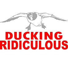 DUCKING RIDICULOUS Photographic Print