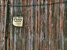 Sliding Barn Door by Aaron Campbell