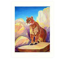 Cougar on the Rocks Art Print