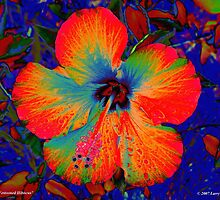 Festooned Hibiscus by Larry Beat