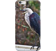 White-Necked Heron iPhone Case/Skin