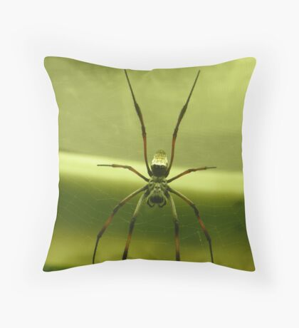 come into my parlour... Throw Pillow