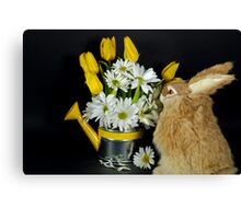 Sniffing Spring Canvas Print