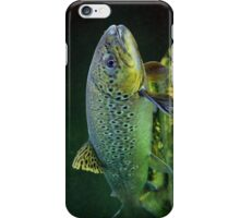 BROWN TROUT iPhone Case/Skin
