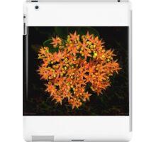 Salmon Surprise iPad Case/Skin