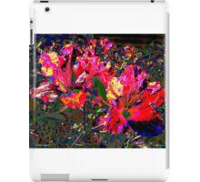 Color Climax iPad Case/Skin