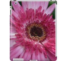 Hot Pink iPad Case/Skin