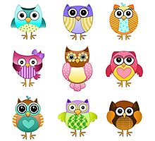 Set of Cute Owls Photographic Print