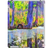 Blued Bayou iPad Case/Skin