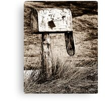 Death of Snail Mail II Canvas Print
