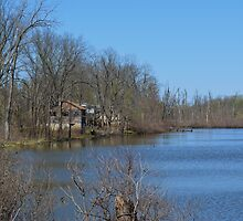 Mississippi River stilt house ghost town by stlmoon