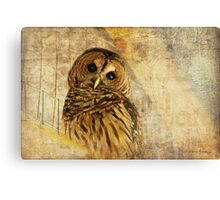 Here's Lookin' At You, Kid! Canvas Print