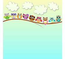 Cute Owls on a Branch Photographic Print