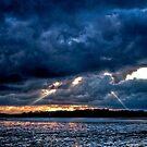 Chichester Marina by Greg Roberts