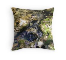 Sylvan Spring Throw Pillow