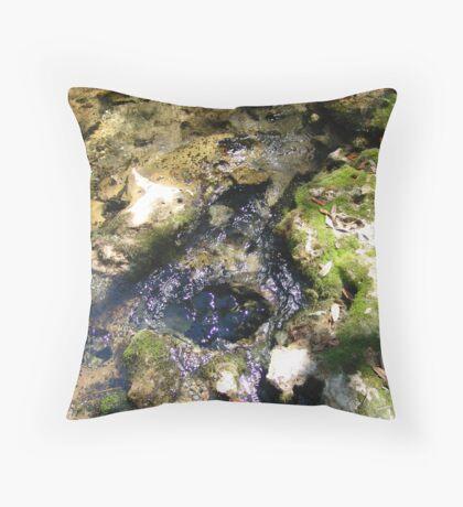 Sylvan Spring Throw Pillow