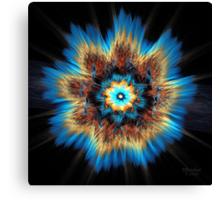 'Exploding Flower' Canvas Print