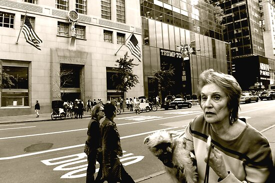 Breakfast at Tiffany's for Tiddles New York  fine art photograph NYC by LJAphotography