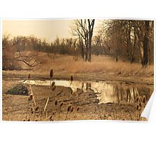 Warm country landscape Poster