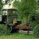 Truck...  lost in de Woods by ienemien