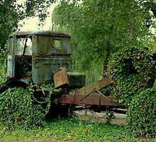 Truck...  lost in de Woods by ienemien