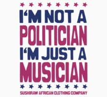 I'm not a politician, I'm a musician by kaysha