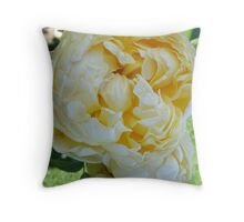 at Woolmer's Historic Home - and the rose garden - Tasmania Throw Pillow