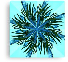 Kaleidascope of ice crystals Canvas Print