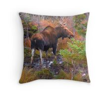Watchful Waiting Throw Pillow