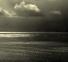 Oceanic by Larry  Stewart