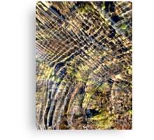 Lined and patterned water with leaf. Canvas Print