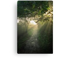 God's Path Canvas Print