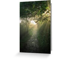 God's Path Greeting Card