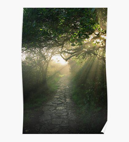 God's Path Poster