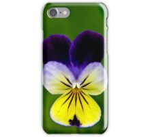 Pretty pansy iPhone Case/Skin