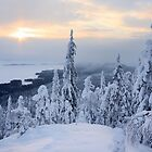 Sunrise in Koli by Päivi  Valkonen