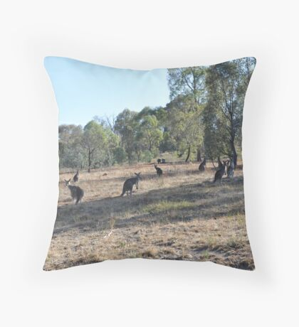 Urban Kangaroos Throw Pillow